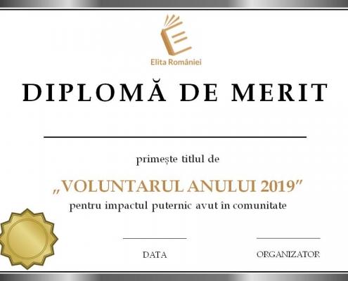 Finala Voluntarul Anului